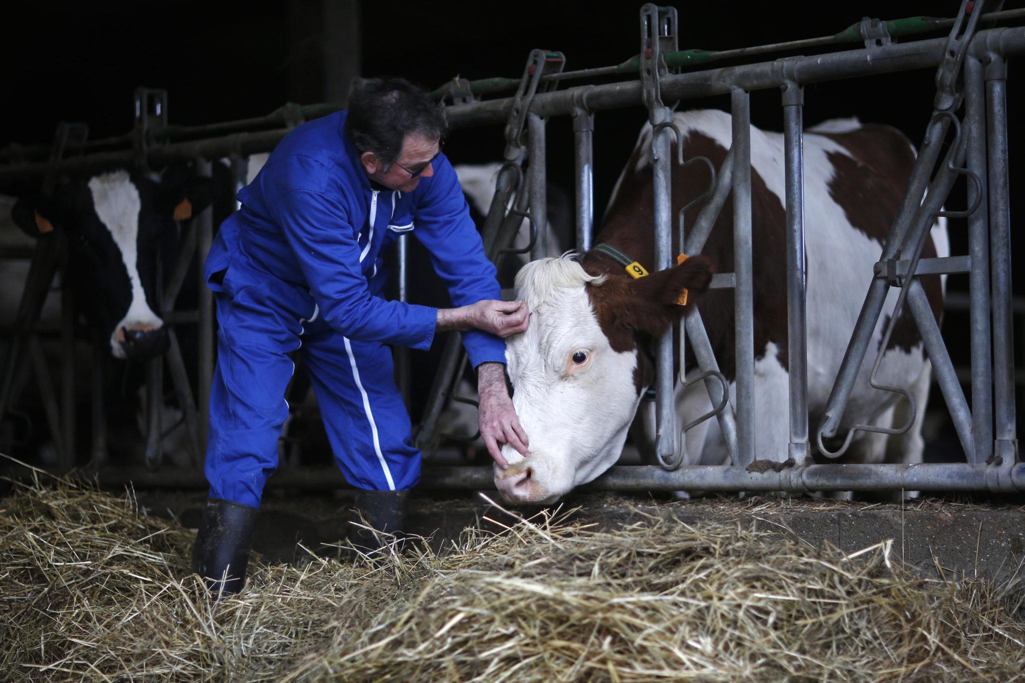 Agriculteurs acupuncteurs – Stéphane Mahé